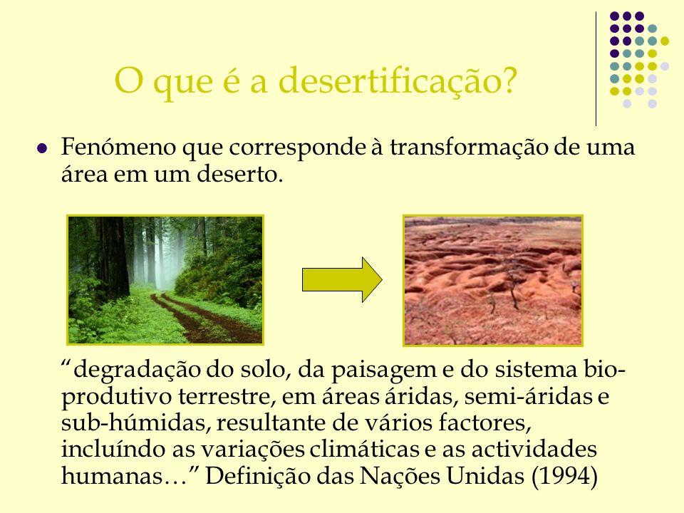 O que é a desertificação? Fenómeno que corresponde à transformação de uma área em um deserto. degradação do solo, da paisagem e do sistema bio- produt