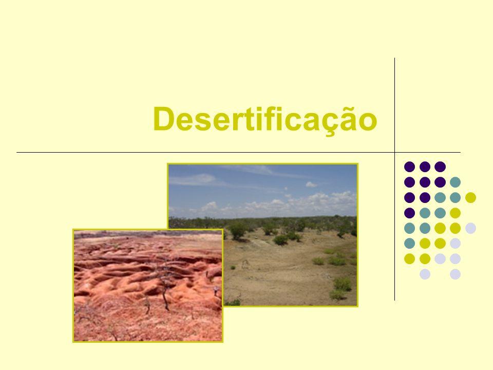 O que é a desertificação.Fenómeno que corresponde à transformação de uma área em um deserto.