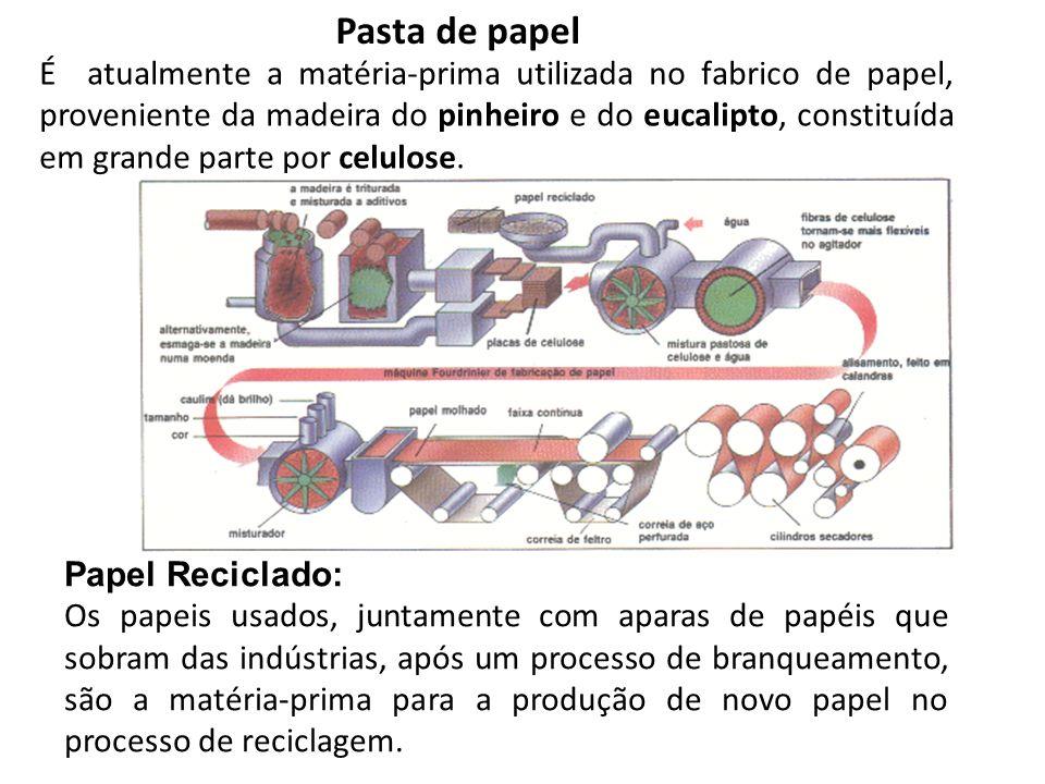 Pasta de papel É atualmente a matéria-prima utilizada no fabrico de papel, proveniente da madeira do pinheiro e do eucalipto, constituída em grande pa
