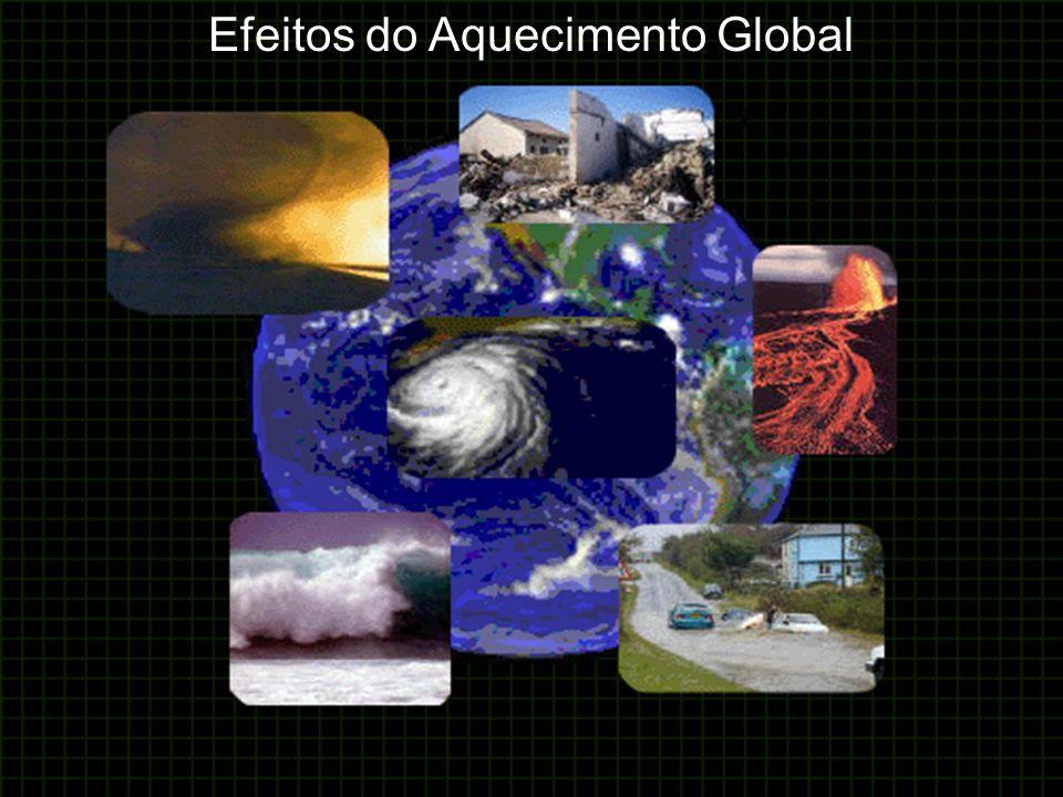 Efeitos do Aquecimento Global