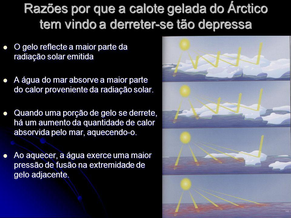 Razões por que a calote gelada do Árctico tem vindo a derreter-se tão depressa O gelo reflecte a maior parte da radiação solar emitida O gelo reflecte a maior parte da radiação solar emitida A água do mar absorve a maior parte do calor proveniente da radiação solar.