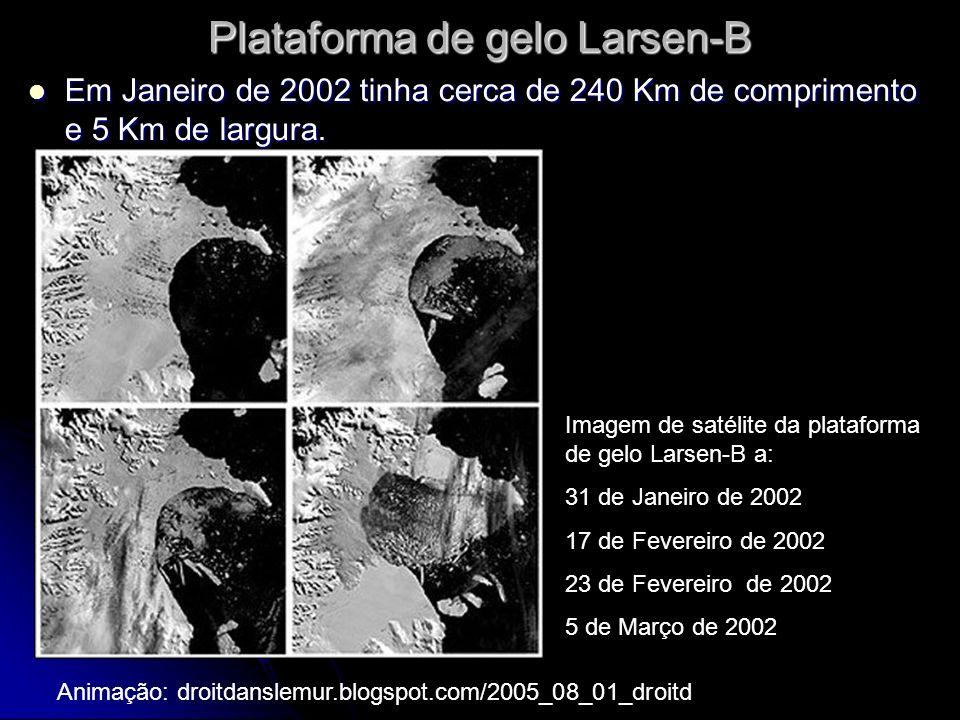 Plataforma de gelo Larsen-B Em Janeiro de 2002 tinha cerca de 240 Km de comprimento e 5 Km de largura.