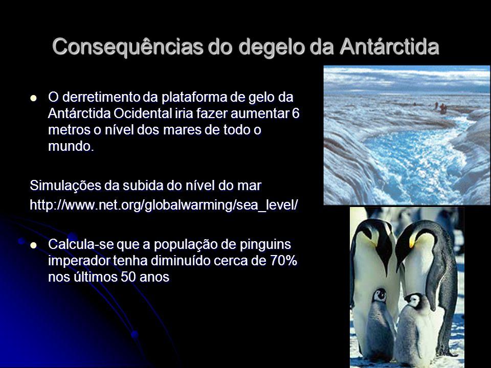 Consequências do degelo da Antárctida O derretimento da plataforma de gelo da Antárctida Ocidental iria fazer aumentar 6 metros o nível dos mares de todo o mundo.