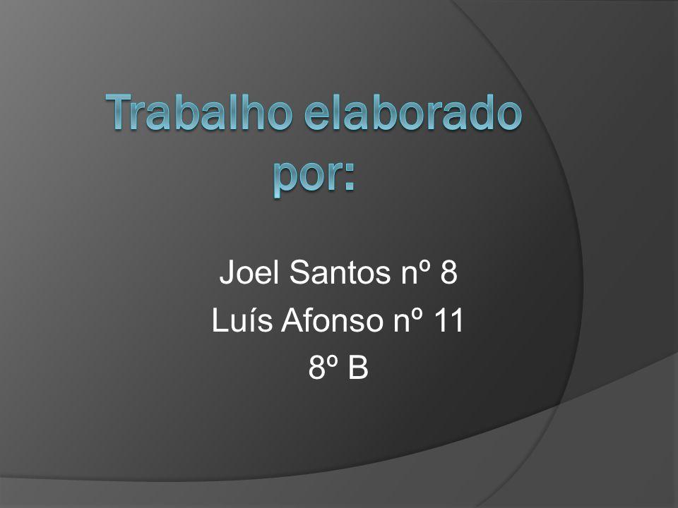 Joel Santos nº 8 Luís Afonso nº 11 8º B