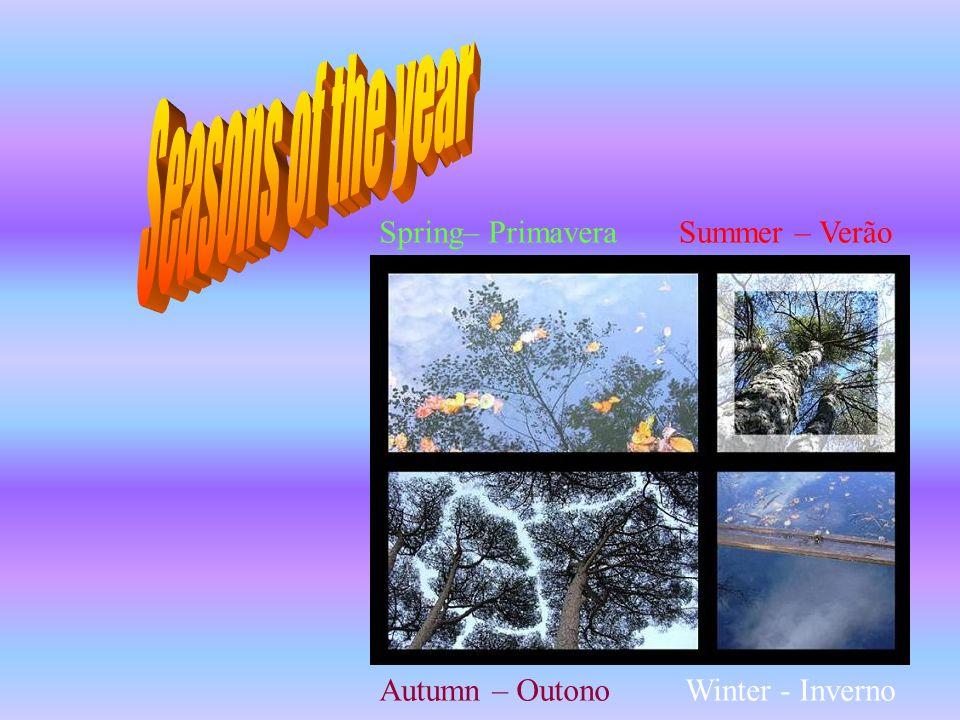 Spring– PrimaveraSummer – Verão Autumn – OutonoWinter - Inverno