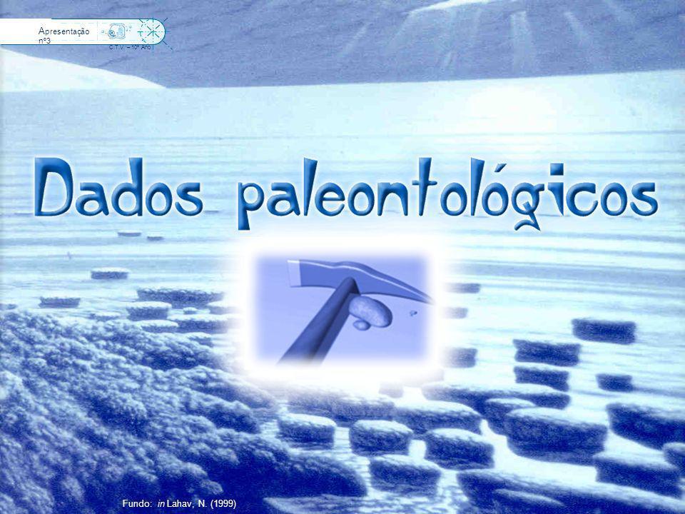 4500 Ma Idade aproximada da Terra 3500 Ma Primeiro registo fóssil Porque será que existe uma grande dificuldade na detecção de dados paleontológicos nos primeiros milhares de milhões de anos de vida sobre a Terra.