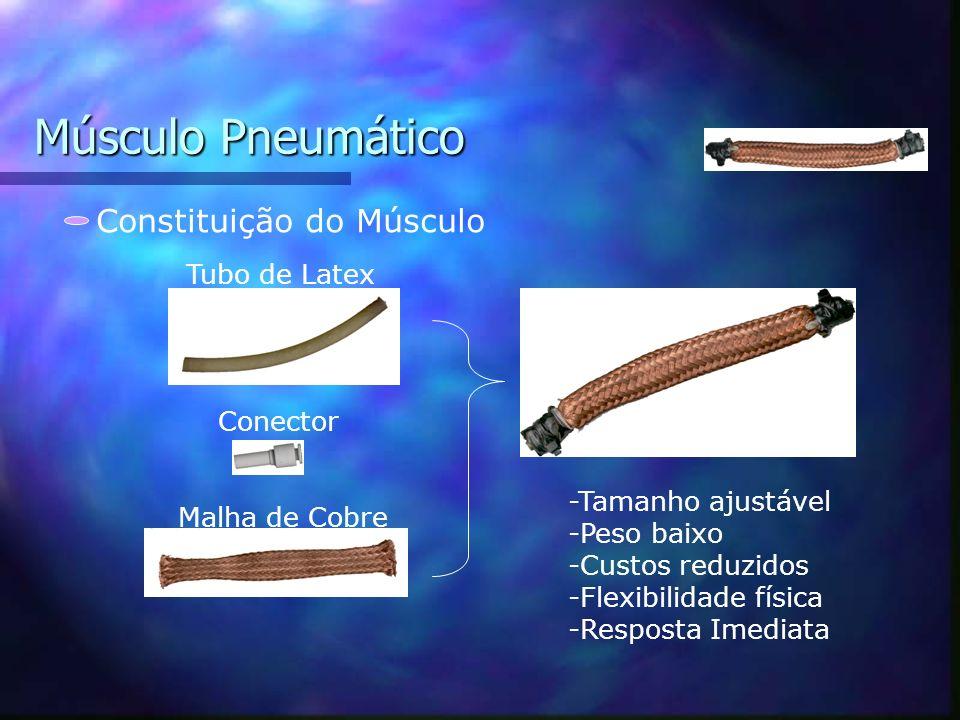 Muscle wires_ implementação da tecnologiaIII Metas : Desenvolvimento de interface (PC) Teste de padrões de locomoção