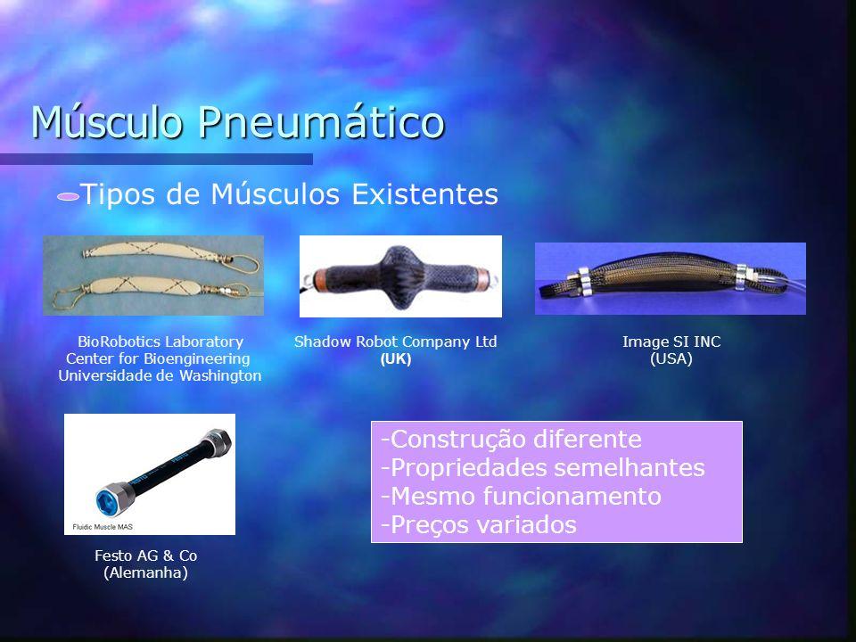 Músculo Pneumático Constituição do Músculo Malha de Cobre Tubo de Latex Conector -Tamanho ajustável -Peso baixo -Custos reduzidos -Flexibilidade físic