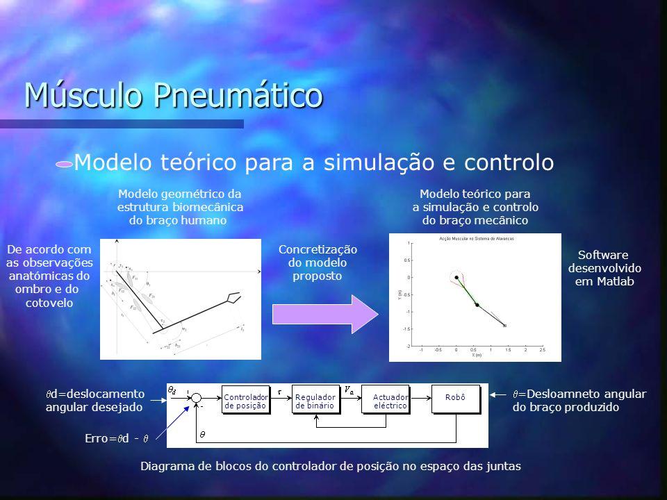 Músculo Pneumático Análise dos resultados obtidos 15,4 cm Comprimento inicial do Músculo Levantamento vertical de uma carga Força (N) Deslocamento (m)