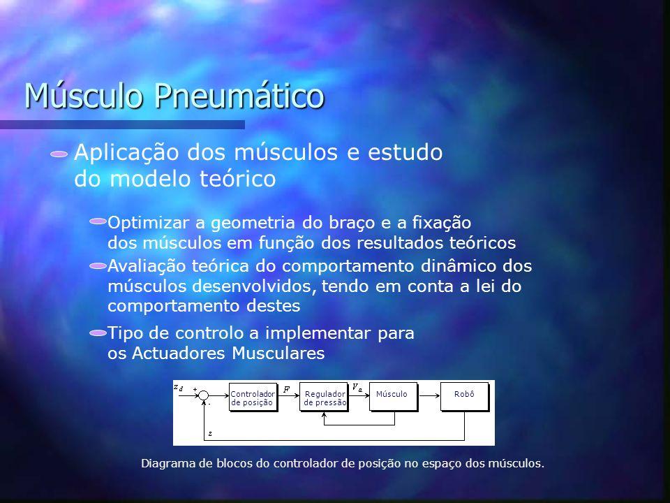 Músculo Pneumático Espaço Músculos Espaço das cartesiano Deslocamento Velocidade Aceleração dos músculos no cotovelo Deslocamento Velocidade Aceleraçã