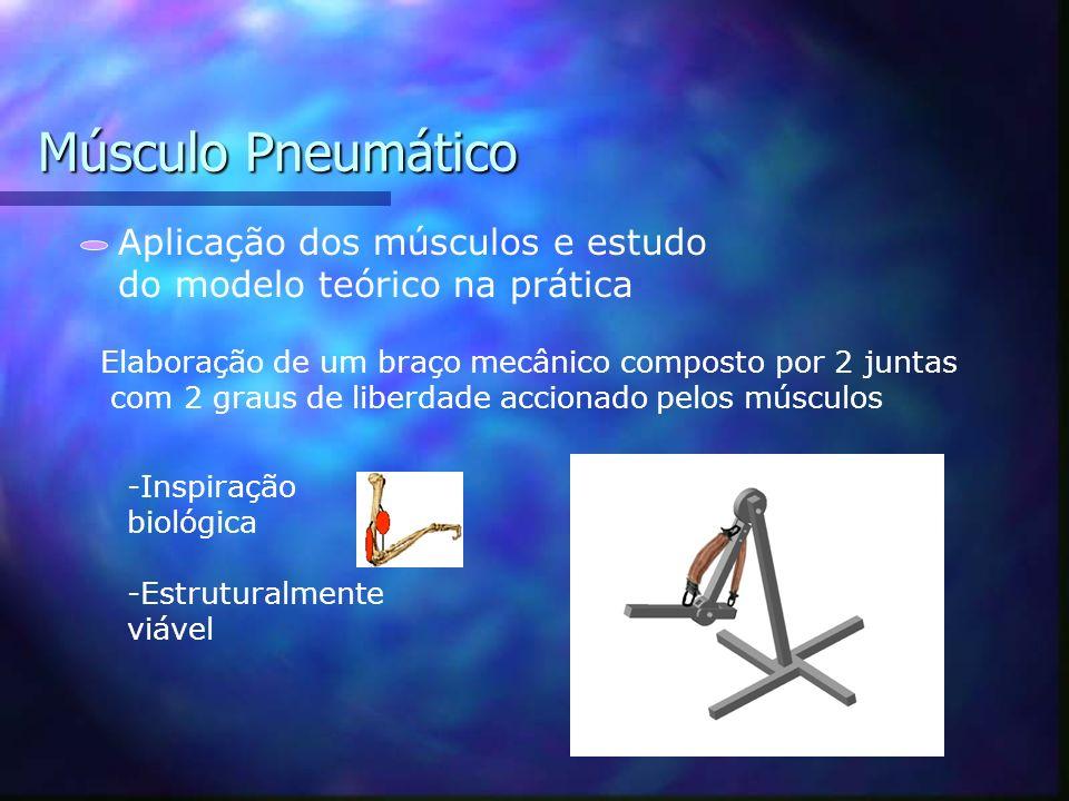 Músculo Pneumático Aplicação dos músculos e estudo do modelo teórico Optimizar a geometria do braço e a fixação dos músculos em função dos resultados