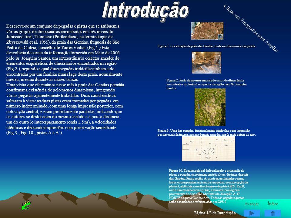 Descreve-se um conjunto de pegadas e pistas que se atribuem a vários grupos de dinossáurios encontradas em três níveis do Jurássico final, Titoniano (