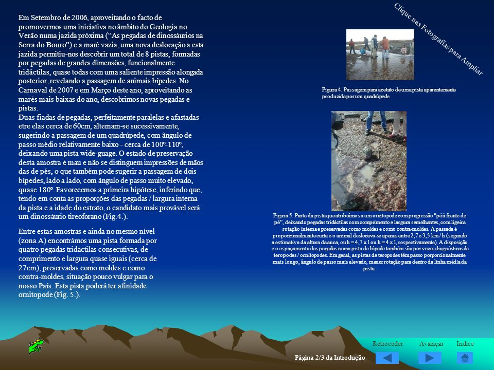 Em dois níveis superiores, na região B, destacam-se : Pegadas de sauropodes, incluindo impressões de pés e de mãos, com excelente preservação, e de grandes dimensões.