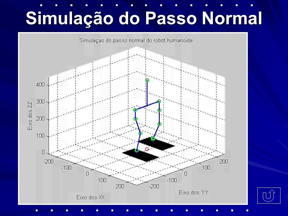 Simulação do Passo Normal