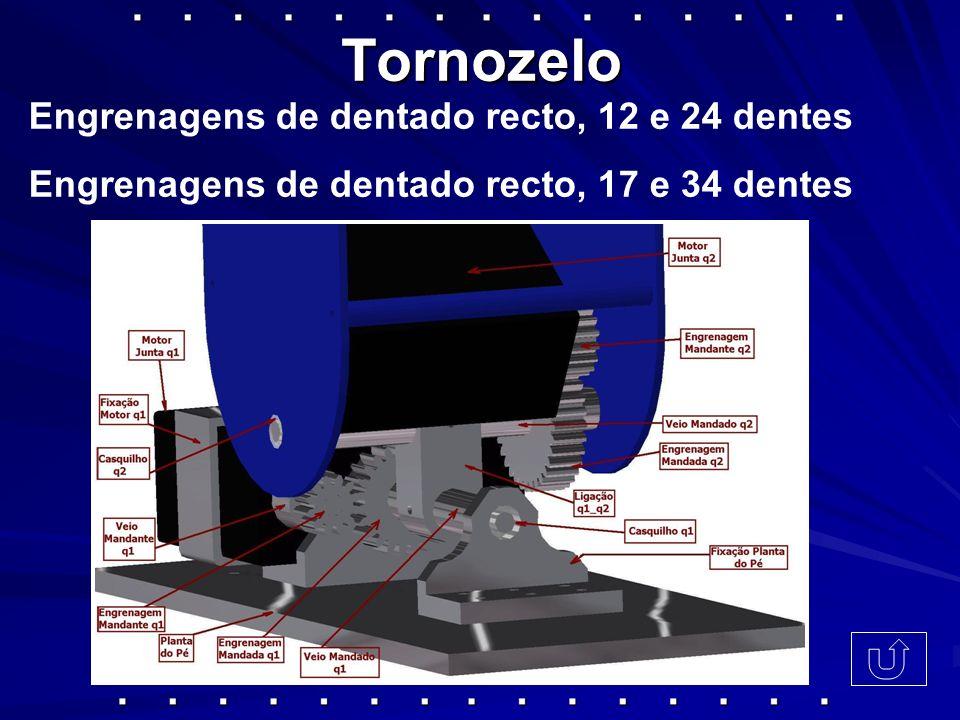 Tornozelo Engrenagens de dentado recto, 12 e 24 dentes Engrenagens de dentado recto, 17 e 34 dentes