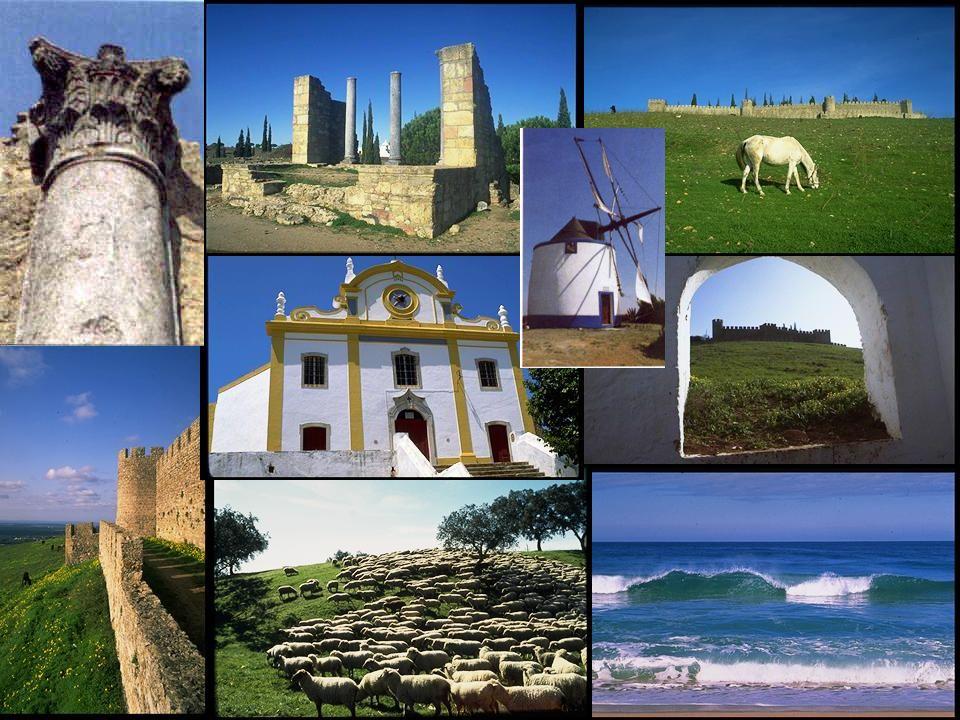 FOCO PARA DESENVOLVIMENTO DE PRODUTOS PATRIMÓNIO CULTURAL –Animação Cultural –Gastronomia NATUREZA E PAISAGEM –Turismo de Natureza/Ecoturismo TURISMO