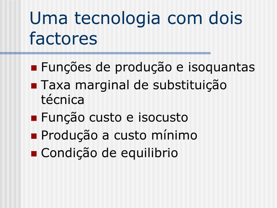 Uma tecnologia com dois factores Funções de produção e isoquantas Taxa marginal de substituição técnica Função custo e isocusto Produção a custo mínim