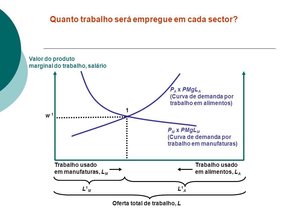 P M x PMgL M (Curva de demanda por trabalho em manufaturas) P A x PMgL A (Curva de demanda por trabalho em alimentos) Valor do produto marginal do tra