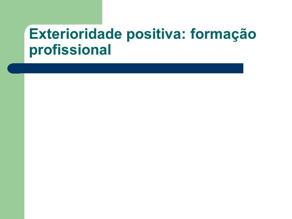 Exterioridade positiva: formação profissional