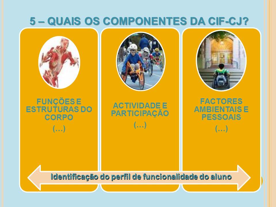 6 – QUAIS AS ETAPAS DE REFERENCIAÇÃO/AVALIAÇÃO NO ÂMBITO DA CIF-CJ.