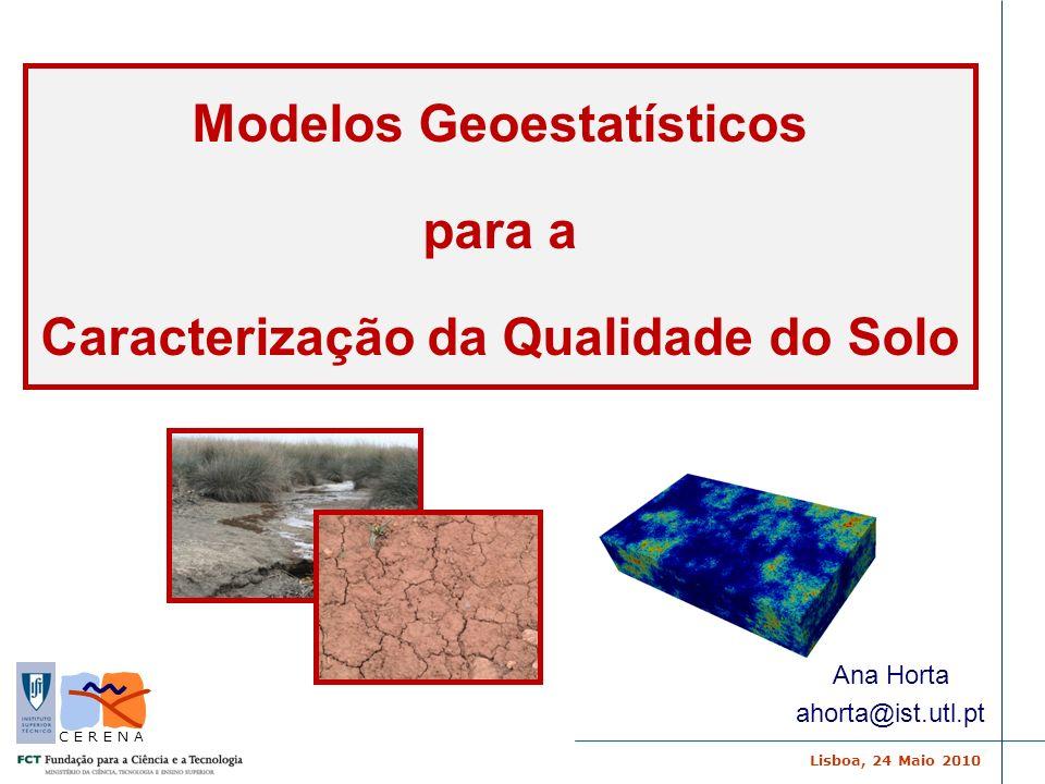 Lisboa, 24 Maio 2010 C E R E N A Modelos Geoestatísticos para a Caracterização da Qualidade do Solo Ana Horta ahorta@ist.utl.pt