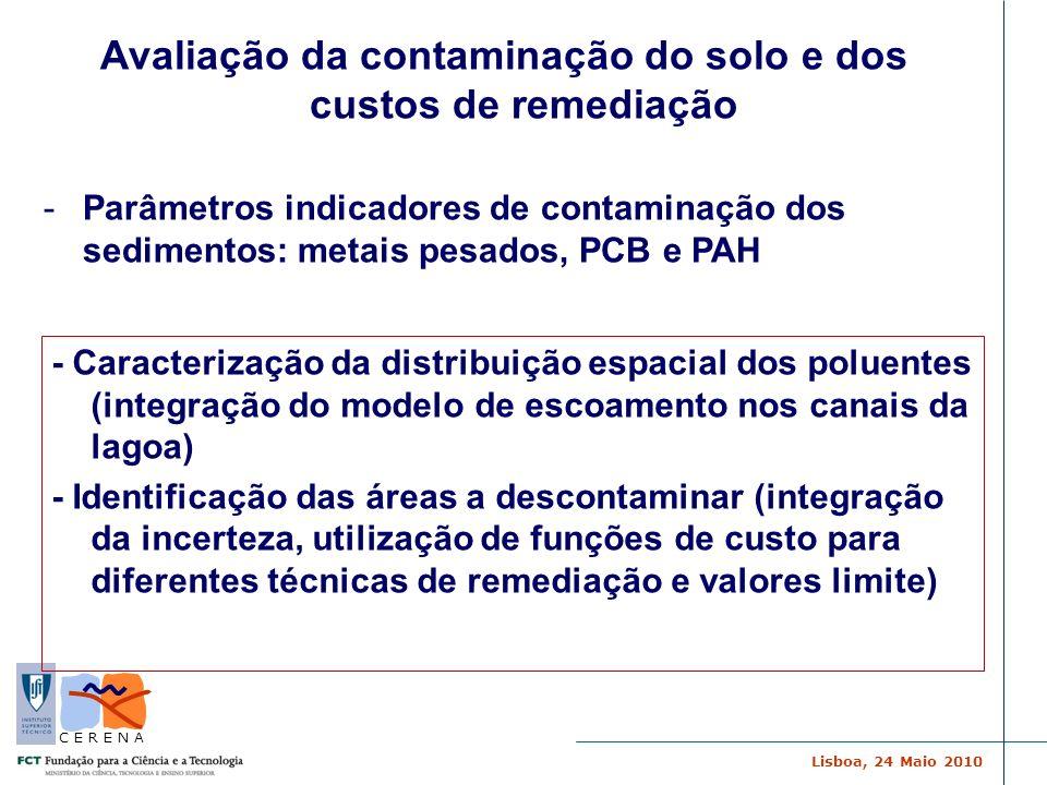 Lisboa, 24 Maio 2010 C E R E N A Avaliação da contaminação do solo e dos custos de remediação -Parâmetros indicadores de contaminação dos sedimentos: