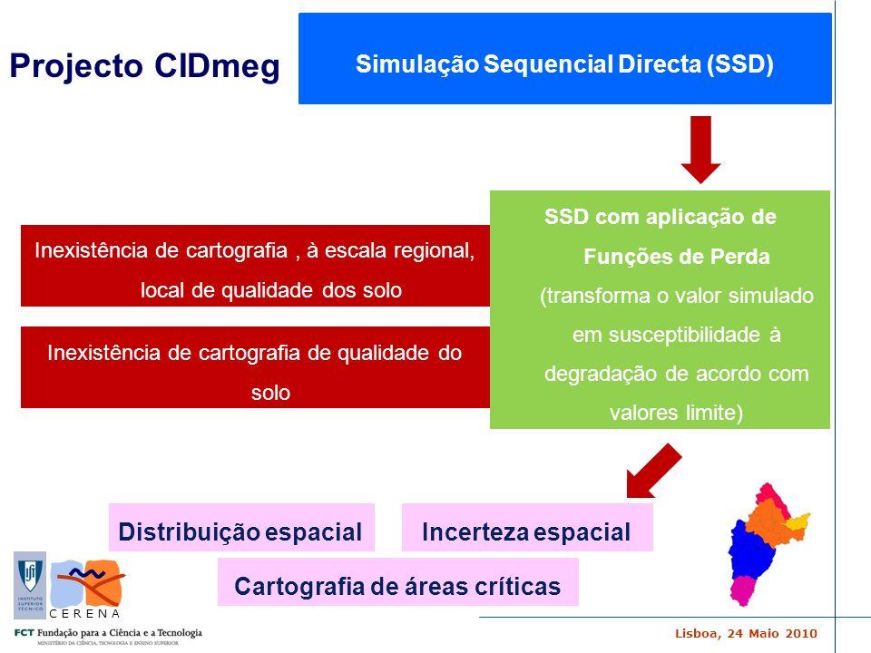 Lisboa, 24 Maio 2010 C E R E N A SSD com aplicação de Funções de Perda (transforma o valor simulado em susceptibilidade à degradação de acordo com val