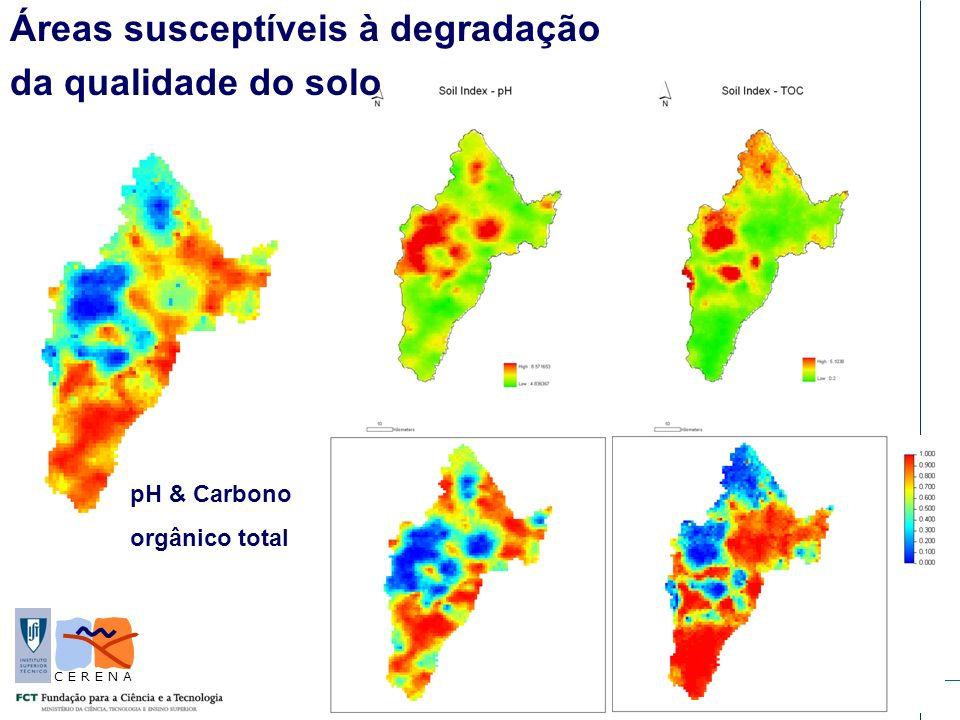 Lisboa, 24 Maio 2010 C E R E N A Áreas susceptíveis à degradação da qualidade do solo pH & Carbono orgânico total