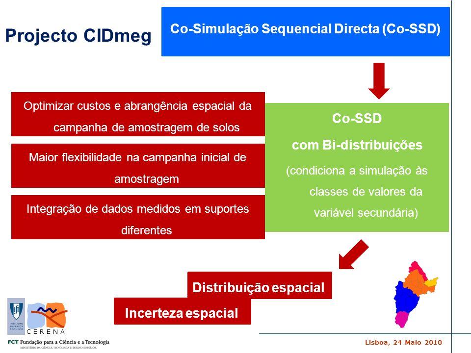 Lisboa, 24 Maio 2010 C E R E N A Co-SSD com Bi-distribuições (condiciona a simulação às classes de valores da variável secundária) Optimizar custos e