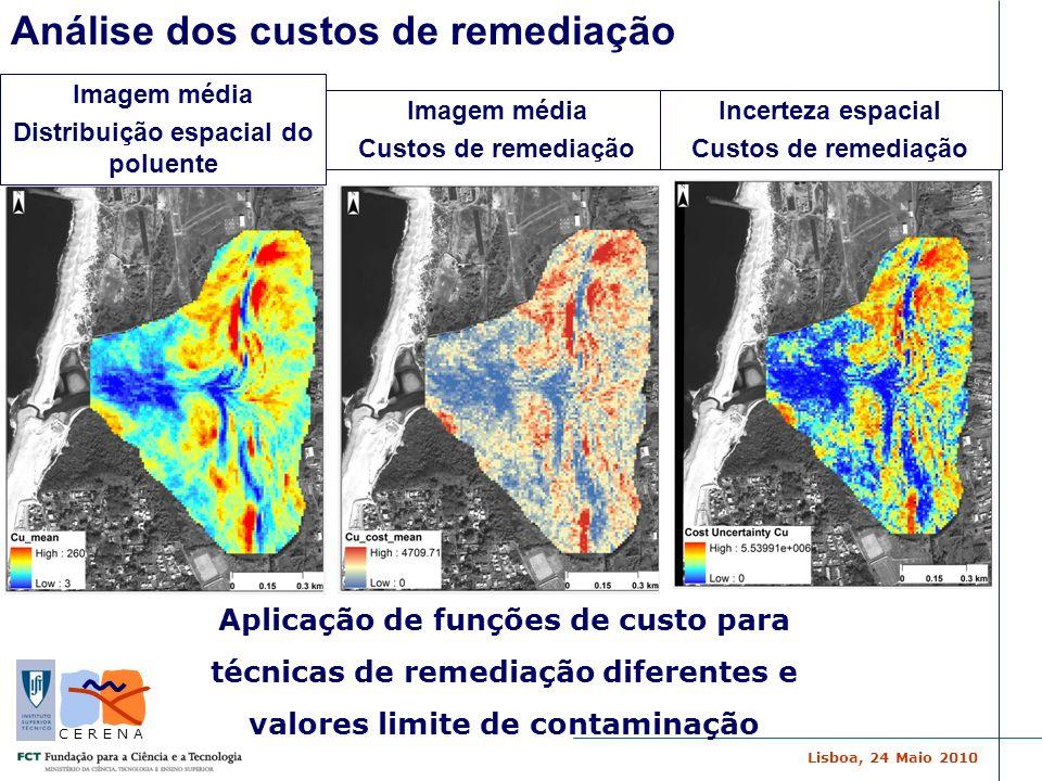 Lisboa, 24 Maio 2010 C E R E N A Aplicação de funções de custo para técnicas de remediação diferentes e valores limite de contaminação Análise dos cus