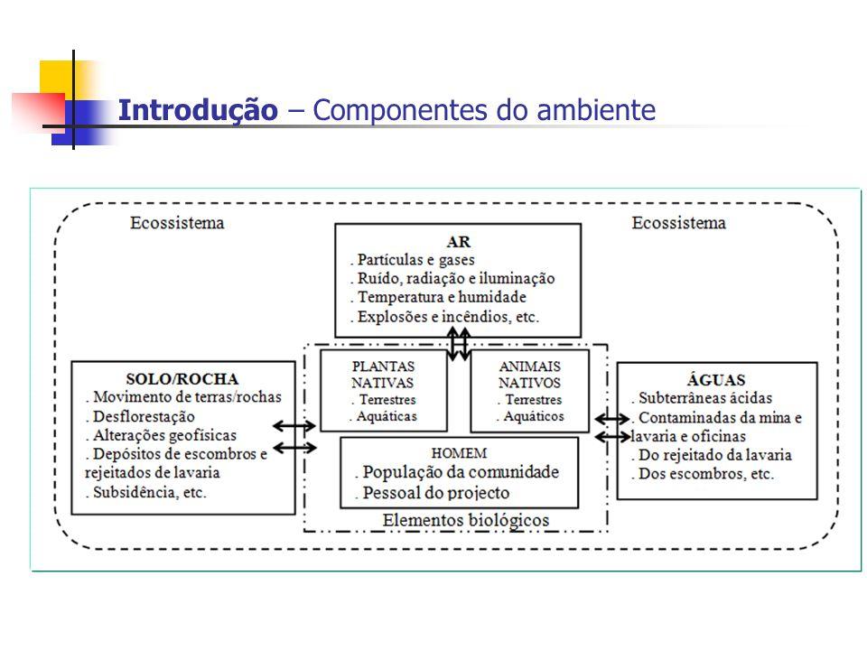 Introdução – Componentes do ambiente
