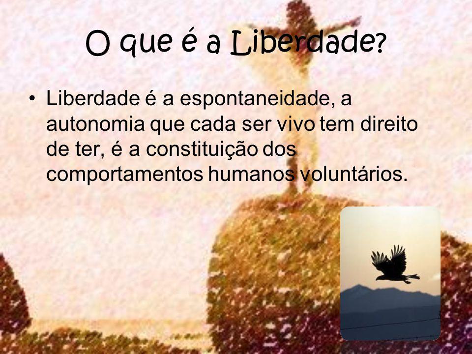 O que é a Liberdade? Liberdade é a espontaneidade, a autonomia que cada ser vivo tem direito de ter, é a constituição dos comportamentos humanos volun