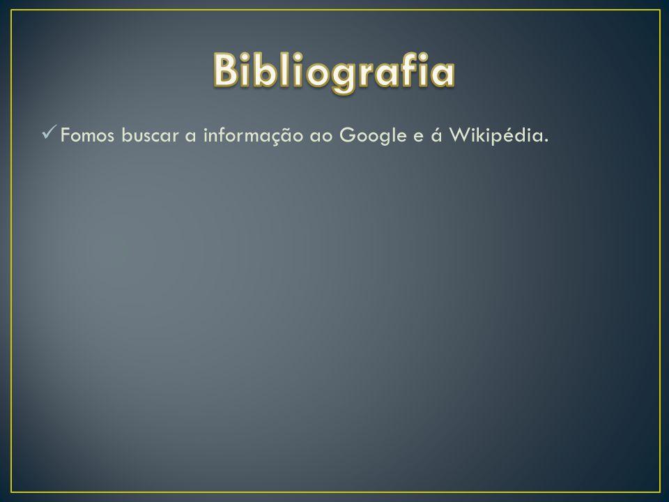Fomos buscar a informação ao Google e á Wikipédia.