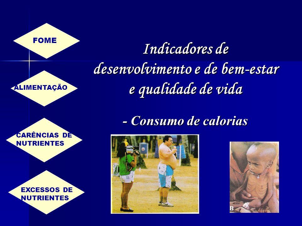 Indicadores de desenvolvimento e de bem-estar e qualidade de vida - Consumo de calorias FOME ALIMENTAÇÃO CARÊNCIAS DE NUTRIENTES EXCESSOS DE NUTRIENTE