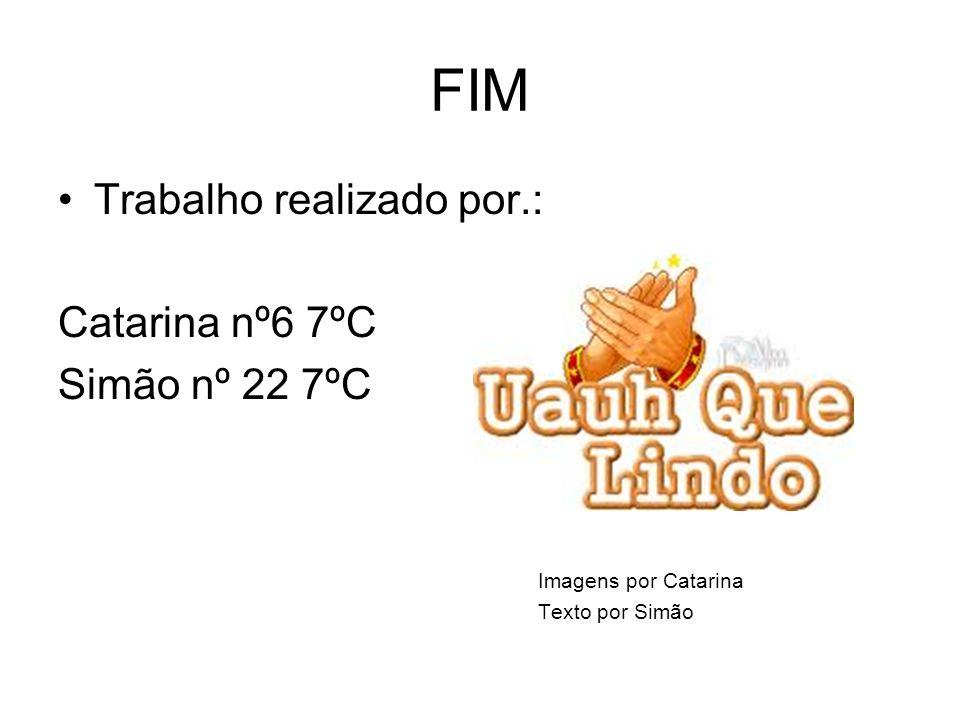 FIM Trabalho realizado por.: Catarina nº6 7ºC Simão nº 22 7ºC Imagens por Catarina Texto por Simão