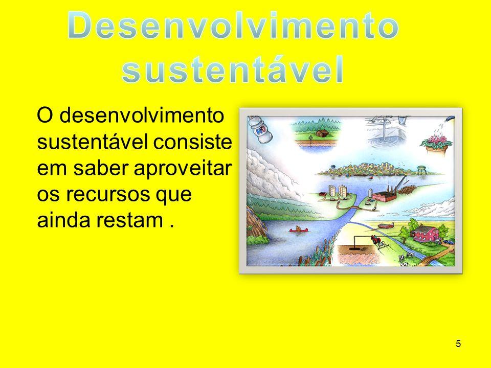 5 O desenvolvimento sustentável consiste em saber aproveitar os recursos que ainda restam.