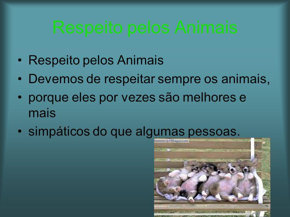Devemos de respeitar sempre os animais, porque eles por vezes são melhores e mais simpáticos do que algumas pessoas.