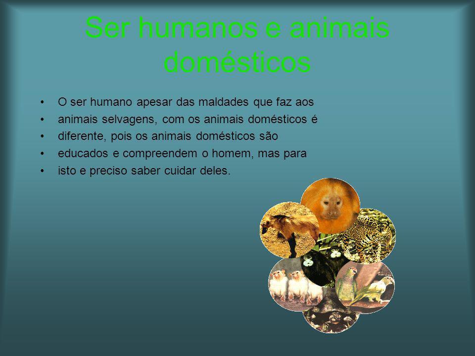 Ser humanos e animais domésticos O ser humano apesar das maldades que faz aos animais selvagens, com os animais domésticos é diferente, pois os animai