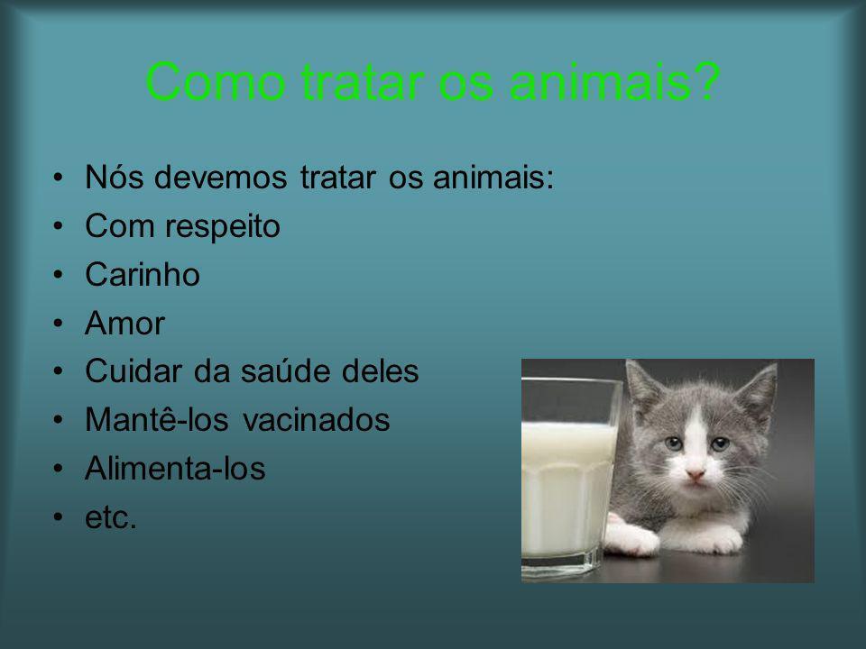 Como tratar os animais? Nós devemos tratar os animais: Com respeito Carinho Amor Cuidar da saúde deles Mantê-los vacinados Alimenta-los etc.