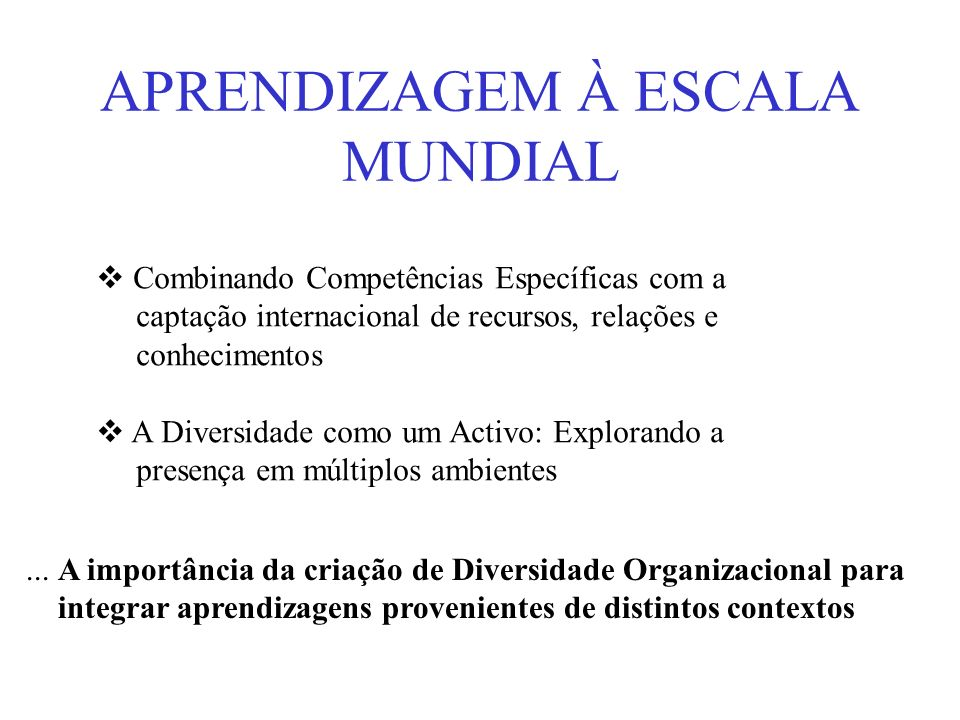 APRENDIZAGEM À ESCALA MUNDIAL Combinando Competências Específicas com a captação internacional de recursos, relações e conhecimentos A Diversidade com