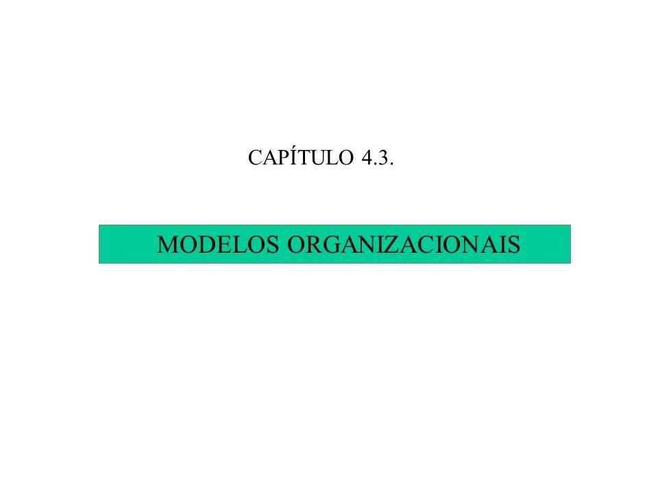 CAPÍTULO 4.3. MODELOS ORGANIZACIONAIS