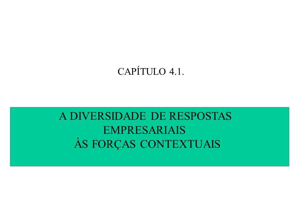 CAPÍTULO 4.1. A DIVERSIDADE DE RESPOSTAS EMPRESARIAIS ÀS FORÇAS CONTEXTUAIS
