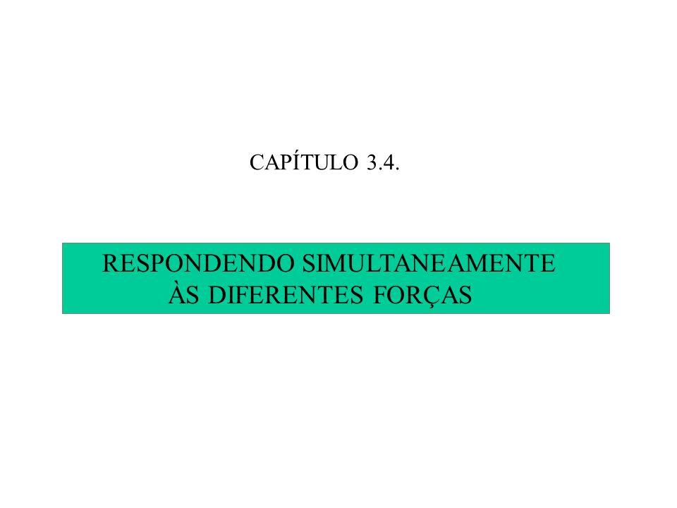 CAPÍTULO 3.4. RESPONDENDO SIMULTANEAMENTE ÀS DIFERENTES FORÇAS