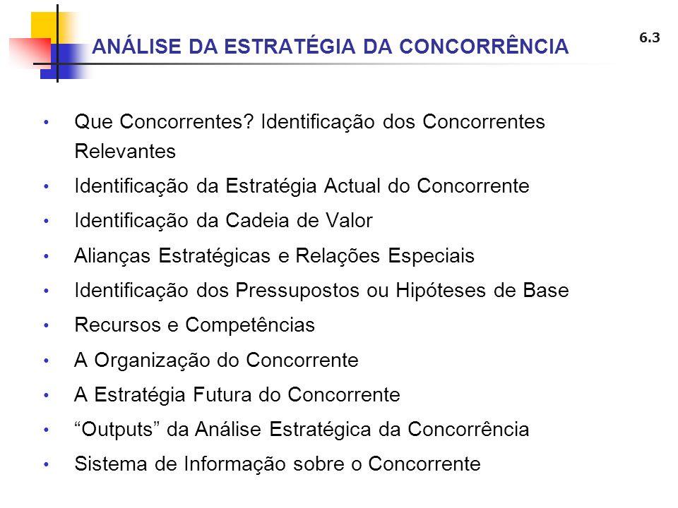 6.3 ANÁLISE DA ESTRATÉGIA DA CONCORRÊNCIA Que Concorrentes? Identificação dos Concorrentes Relevantes Identificação da Estratégia Actual do Concorrent