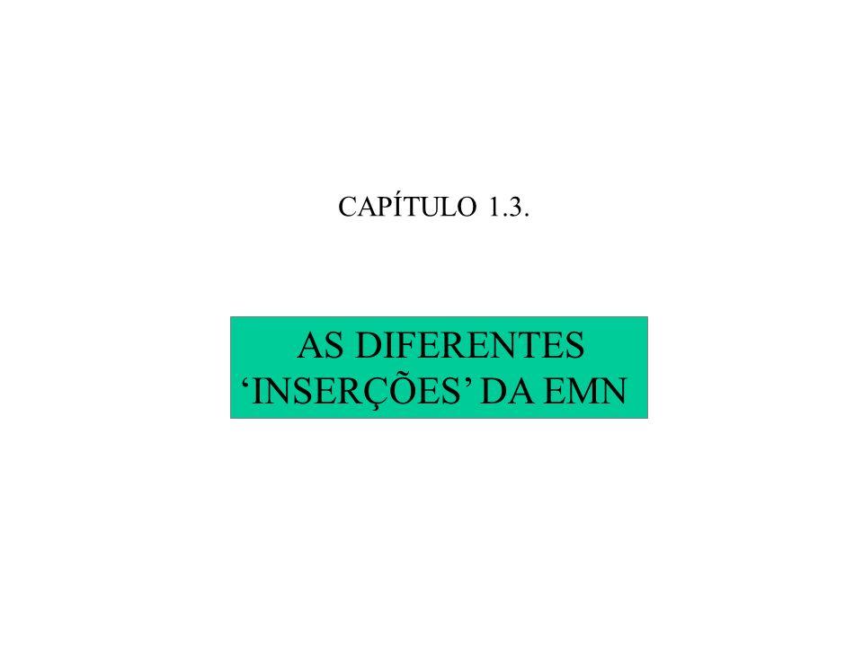 CAPÍTULO 1.3. AS DIFERENTES INSERÇÕES DA EMN
