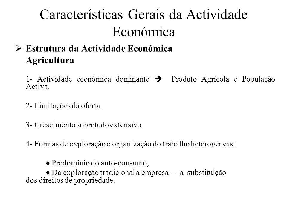 Características Gerais da Actividade Económica Estrutura da Actividade Económica Actividades transformadoras 1- Fontes de energia renováveis.
