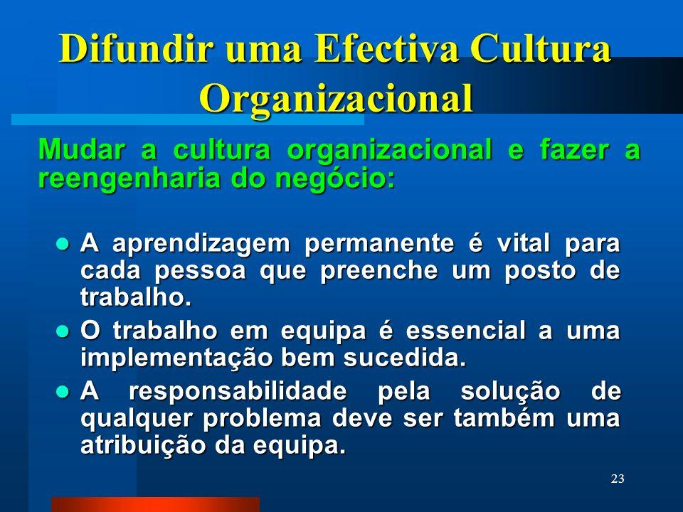 23 Difundir uma Efectiva Cultura Organizacional Mudar a cultura organizacional e fazer a reengenharia do negócio: A aprendizagem permanente é vital pa