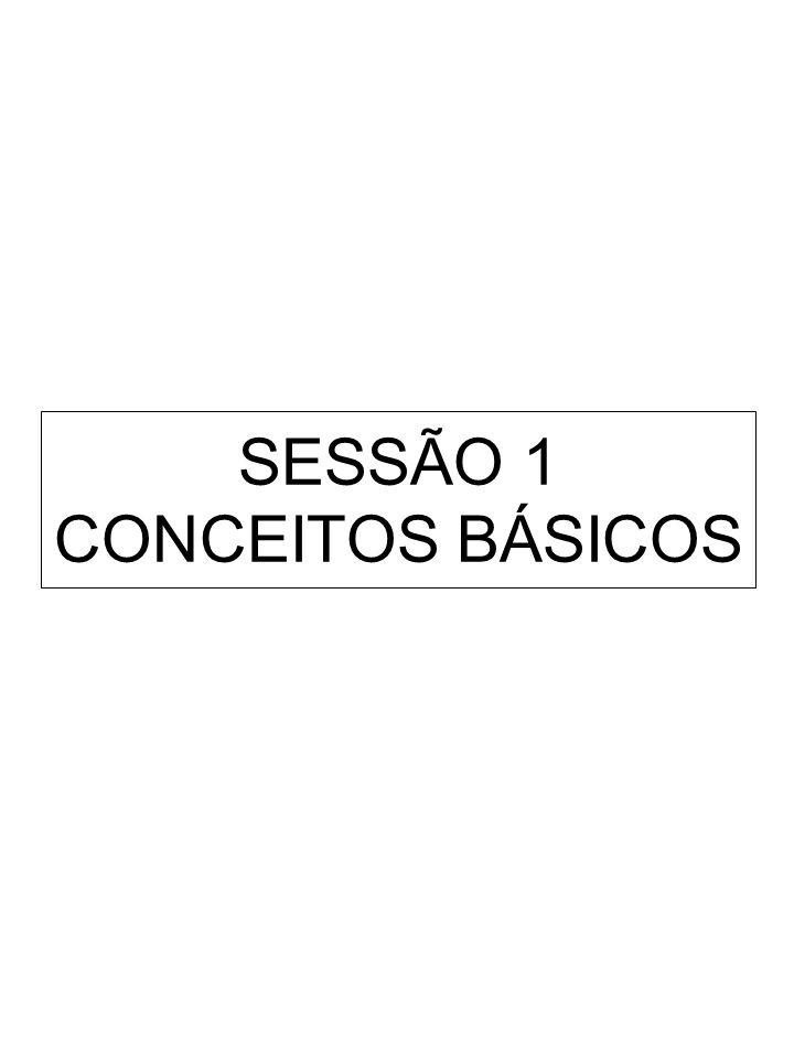 A IMPORTÂNCIA CRESCENTE DA APRENDIZAGEM NA GESTÃO LEARNING FIRM (SENGE, 1990) THE KNOWLEDGE-CREATING COMPANY (NONAKA & TAKEUCHI, 1995) THE INDIVIDUALIZED COMPANY ( GHOSHAL & BARTLETT, 1997) THE VALUE-ADDING KNOWLEDGE COMPANY (THISSEN ET ALLII, 1998)