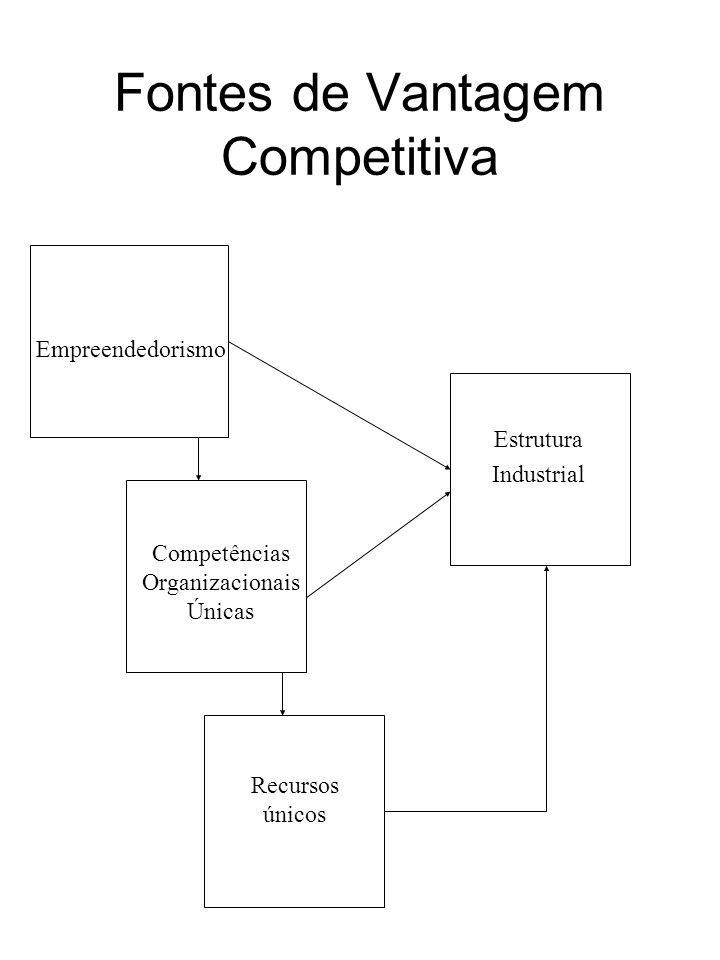 Estrutura Industrial Empreendedorismo Competências Organizacionais Únicas Recursos únicos Fontes de Vantagem Competitiva