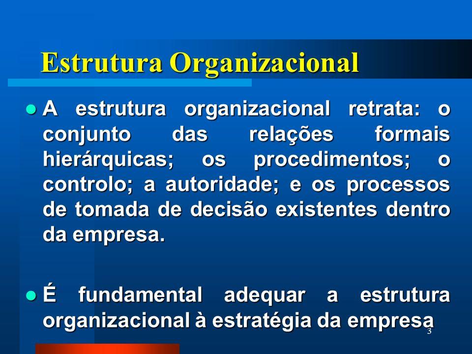 3 Estrutura Organizacional A estrutura organizacional retrata: o conjunto das relações formais hierárquicas; os procedimentos; o controlo; a autoridade; e os processos de tomada de decisão existentes dentro da empresa.